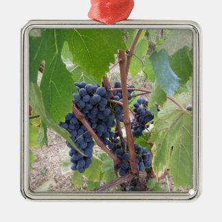Raisins rouges sur la vigne avec le feuille vert ornement carré argenté