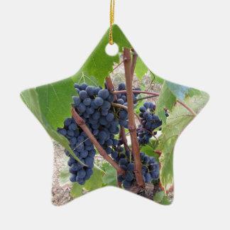 Raisins rouges sur la vigne avec le feuille vert ornement étoile en céramique