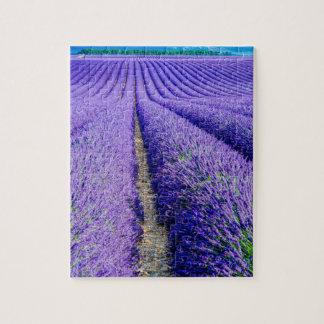 Rangées de lavande, Provence, France Puzzle