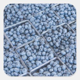 Rangées des myrtilles sticker carré