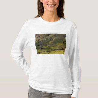 Rano Raraku, Rapa Nui, île de Pâques, Chili T-shirt
