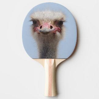 Raquette De Ping Pong Autruche