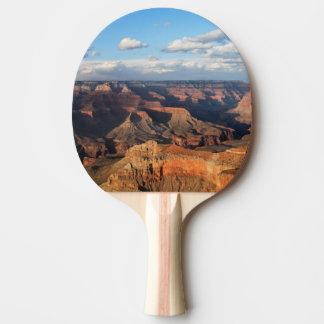 Raquette De Ping Pong Canyon grand vu de la jante du sud en Arizona