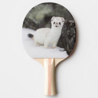 Raquette De Ping Pong chasse Court-coupée la queue de belette pour des