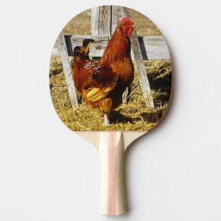 Raquette De Ping Pong Coq de rouge d'île de Rhode