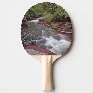 Raquette De Ping Pong Crique perdue de cheval en parc national de lacs
