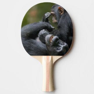 Raquette De Ping Pong L'Afrique, Ouganda, réservation de forêt de