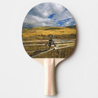 Raquette De Ping Pong Le bâti Haggin NWR s'approchent de l'anaconda