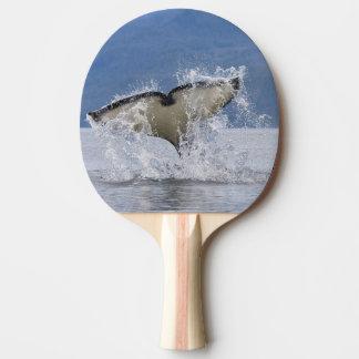 Raquette De Ping Pong Le Canada, Colombie-Britannique, île de Vancouver,