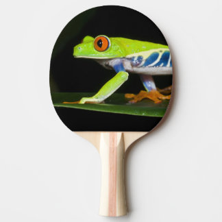 Raquette De Ping Pong Le Costa Rica, grenouille d'arbre aux yeux rouges