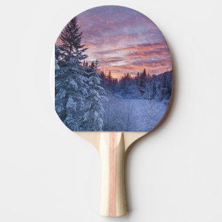 Raquette De Ping Pong Le coucher du soleil vif peint le ciel au-dessus