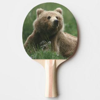 Raquette De Ping Pong Les Etats-Unis, Alaska, ours bruns de sous-adulte