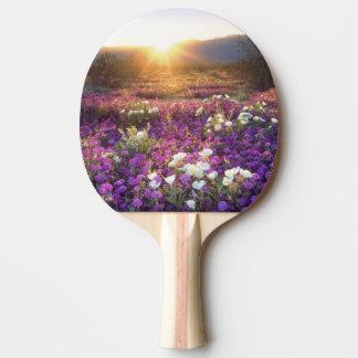 Raquette De Ping Pong Les Etats-Unis, la Californie, parc d'état de