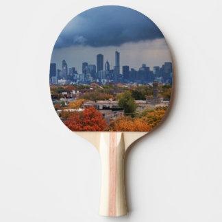 Raquette De Ping Pong Les Etats-Unis, l'Illinois, Chicago, paysage
