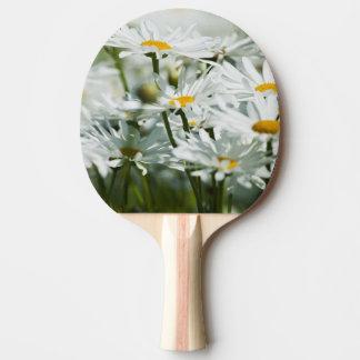 Raquette De Ping Pong Les Etats-Unis, Orégon, vallée de Willamette,