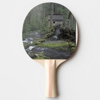 Raquette De Ping Pong Les Etats-Unis, Tennessee, ressortissant 3 de