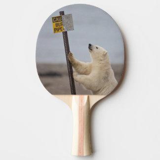 Raquette De Ping Pong L'ours blanc se penche sur le signe pour le tuyau