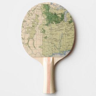 Raquette De Ping Pong Mille de 161 Barley/sq