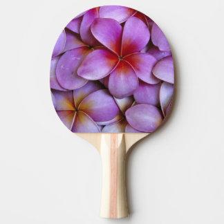 Raquette De Ping Pong N.A., Etats-Unis, Maui, Hawaï. Fleurs roses de