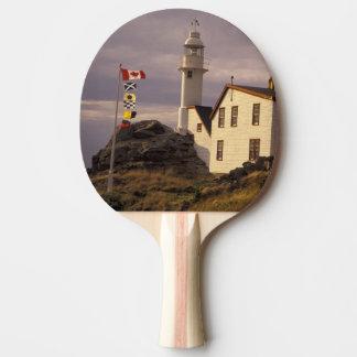 Raquette De Ping Pong Na, Canada, Terre-Neuve, crique de homard. Homard