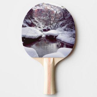 Raquette De Ping Pong Neige profonde aux piscines vertes moyennes