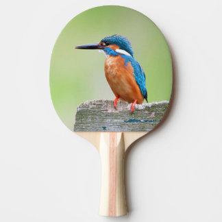 Raquette De Ping Pong Oiseau de martin-pêcheur