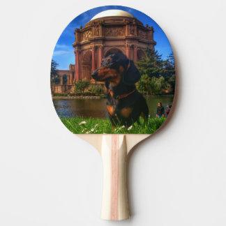 Raquette De Ping Pong Palais des beaux-arts