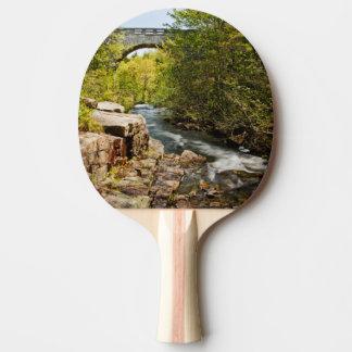 Raquette De Ping Pong Pont au-dessus de rivière