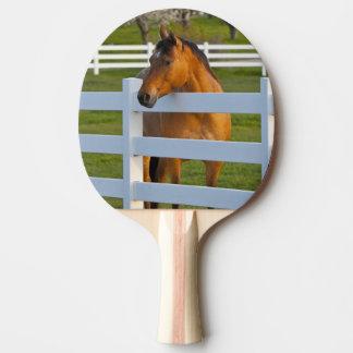 Raquette De Ping Pong Poses de cheval par le verger de cerise à tête