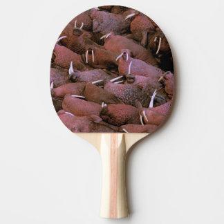 Raquette De Ping Pong Ressortissant de delta de l'Amérique du Nord,