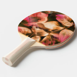 Raquette Tennis De Table Automne