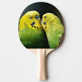 Raquette Tennis De Table Baisers de l'oiseau de perroquet de perruche