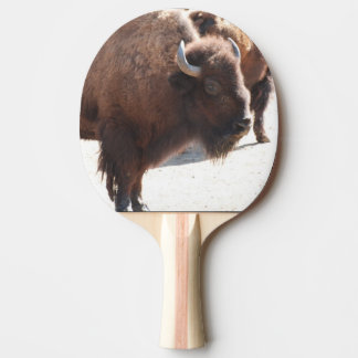 Raquette Tennis De Table Bison