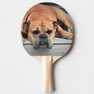 Raquette Tennis De Table Bouledogue continental personnalisable