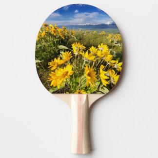 Raquette Tennis De Table Chaîne nationale de bison