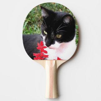 Raquette Tennis De Table Chat impressionnant de smoking dans le jardin