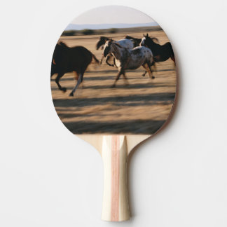 Raquette Tennis De Table Chevaux courants
