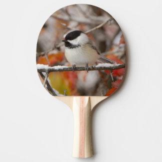 Raquette Tennis De Table Chickadee Noir-couvert par adulte dans la neige,