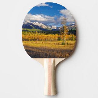 Raquette Tennis De Table Cieux bleus et nuages au-dessus d'un pré