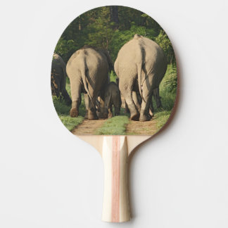 Raquette Tennis De Table Éléphants d'Asie sur la voie de jungle, Corbett