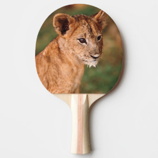 Raquette Tennis De Table Jeune séance de lion