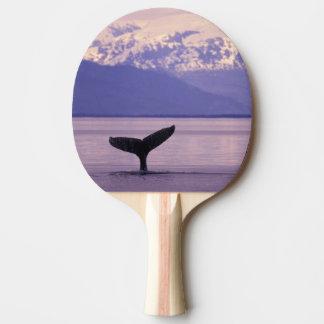 Raquette Tennis De Table L'Amérique du Nord, Etats-Unis, Alaska, passage