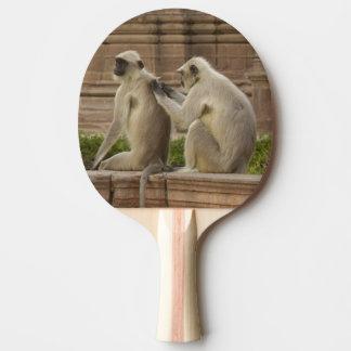 Raquette Tennis De Table Langurs de Hanuman ou Noir-fait face, terrain