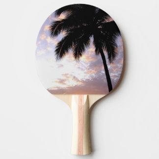 Raquette Tennis De Table Les Caraïbe, États-Unis Îles Vierges, St Thomas, 3