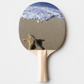 Raquette Tennis De Table Les Etats-Unis, Hawaï, Maui, plage de Makena,