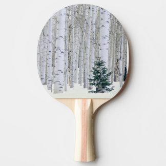 Raquette Tennis De Table L'UTAH. LES Etats-Unis. Aspen (tremuloides de