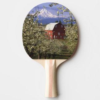 Raquette Tennis De Table N.A., Etats-Unis, Orégon, le comté de Hood River.