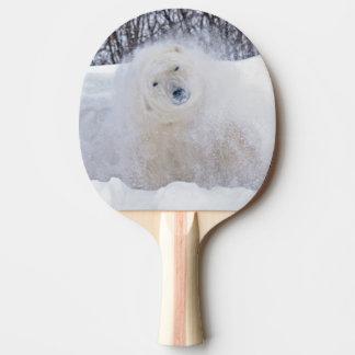 Raquette Tennis De Table Ours blanc secouant la neige sur la toundra