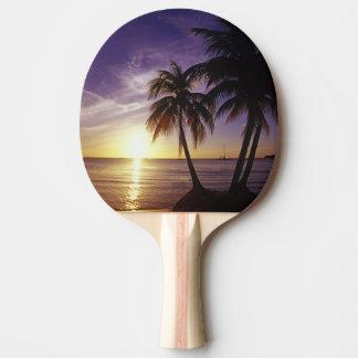 Raquette Tennis De Table Plages chez Negril, Jamaïque 3