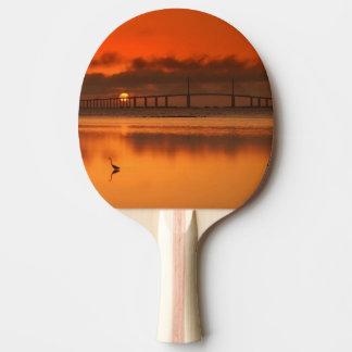 Raquette Tennis De Table Pont de Skyway